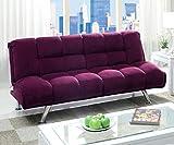 Furniture of America Amanda Futon Sofa