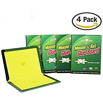 Amazon Com Saros Pack Of 4 Mouse Glue Traps Sticky