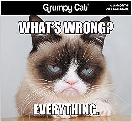 grumpy cat 2016 calendar amazon co uk acco brands