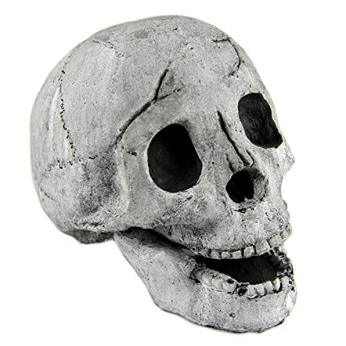Myard Fireproof Imitated Human Fire Pit Skull Gas Log for NG, LP Wood Fireplace, Firepit, Campfire, Halloween Decor, BBQ (Qty 1, White) (Shaped Fan Fireplace Screen)
