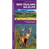 New Zealand Wildlife: A Folding Pocket Guide to Familiar Animals (A Pocket Naturalist Guide)