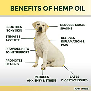 Furry Friend Hemp Oil for Dogs and Cats - 500MG - Anxiety Relief for Dogs and Cats - 100% Organic Pet Hemp Oil - Supports Hip and Joint Health - Grown & Made in USA - Natural Relief for Pain