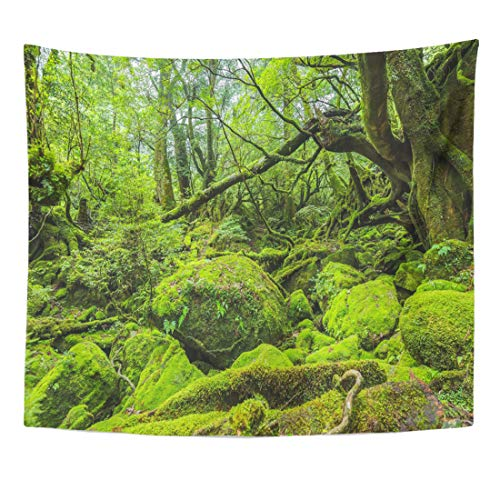 Semtomn Tapestry Mossed Forest in Shiratani Unsuikyo Ravine Yakushima Island Japan Home Decor Wall Hanging for Living Room Bedroom Dorm 50x60 Inches