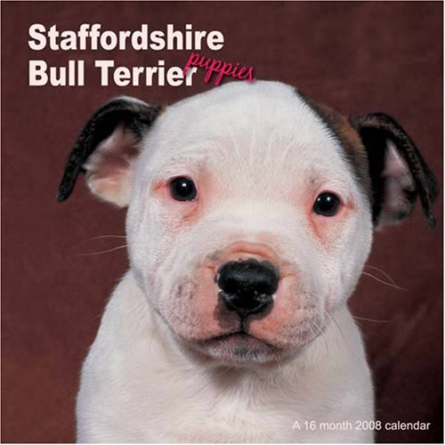 Staffordshire Bull Terriers Puppies 2008 Wall Calendars (Puppies 2008 Calendar)