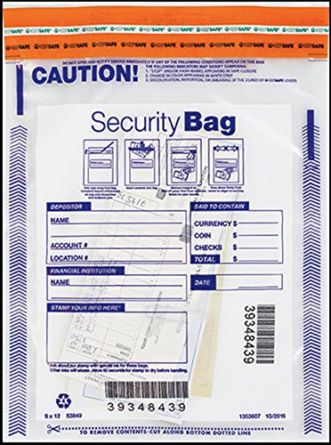 EGP Small Single Clear Pocket Bank Deposit Bag - 9 x 12