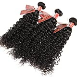Curly Wave Virgin Hair Brazilian Human Hair Extensions Curly Weave Unprocessed Real Hair 8A Grade 3 Bundles Natural Black (14