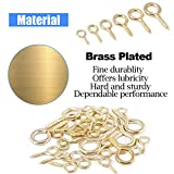 Glarks 100-Pieces 6 Size Brass Plated Lag Eyebolts
