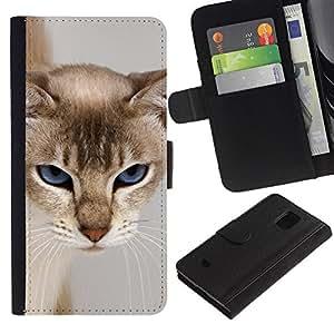 Paccase / Billetera de Cuero Caso del tirón Titular de la tarjeta Carcasa Funda para - Cat Blue Eyes Feline Grumpy Face Furry - Samsung Galaxy S5 Mini, SM-G800, NOT S5 REGULAR!