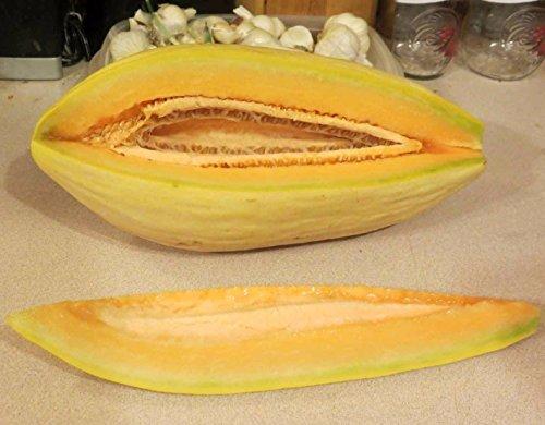Banana Melon 100 seeds sweet easy grow CombSH H25 (Banana Melon Seeds)