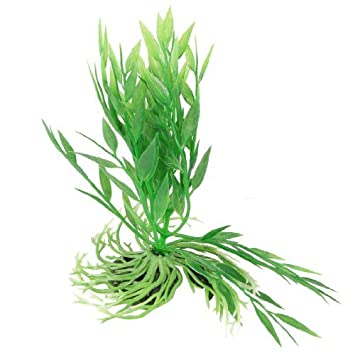 Amazon.com : eDealMax Plantas plástico coralino del acuario de agua Decoración, Verde : Pet Supplies