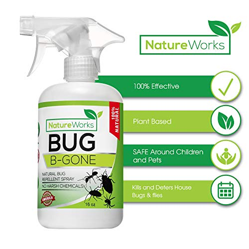 Bug-B-Gone- Home Defense I Natural Indoor & Patio Pest Control Spray I FDA & EPA Approved I Child & Pet Friendly I Kills Repeals Deters I Ant Roach Termite Mosquito & Fly's Spider Silverfish Centipede
