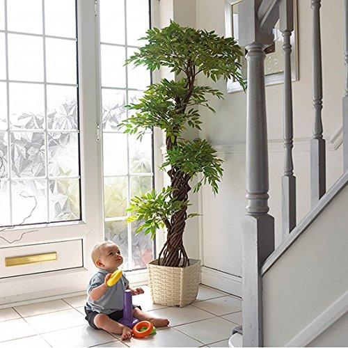 Best Quality Artificial Plants and Trees, Large Beautiful Japanese Fruticosa Tree, Handmade Using Real Bark & Synthetic Leaves, Indoor Plant - 165cm Tall. by Vert Lifestyle