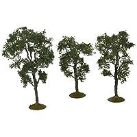 """Bachmann entrena árboles de arce de 3 """"- 4"""" - 3 por caja"""