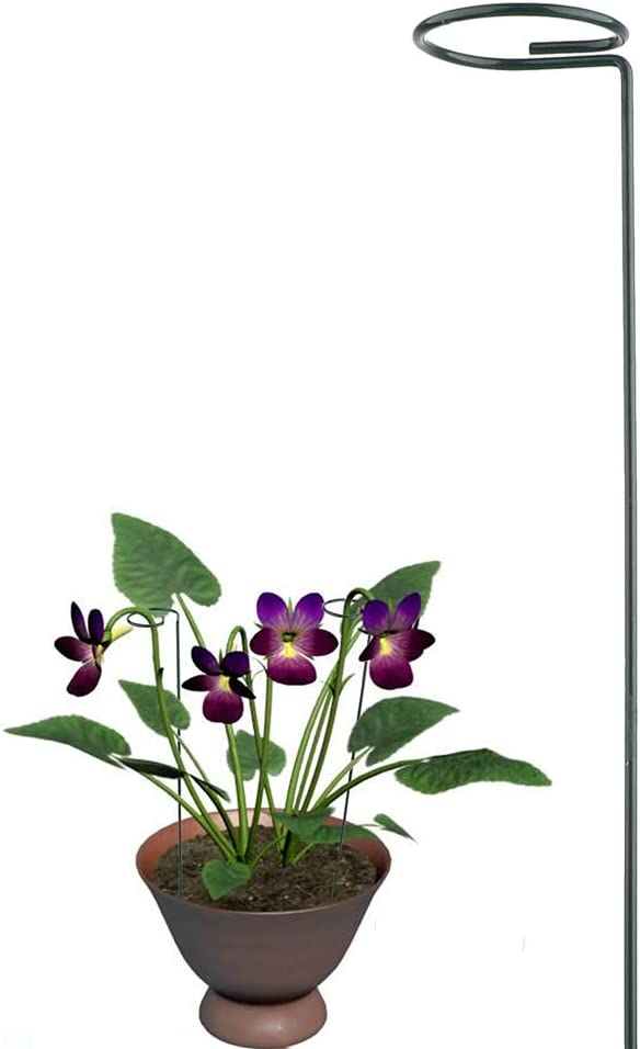 BELUPAI Plant Support Stakes 40 cm// 16 inch Long Garden Single Stem Support Stake Plant Cage Support Rings with Plant Clips for Amaryllis Tomatoes Orchid Lily Peony Rose Flower Stem
