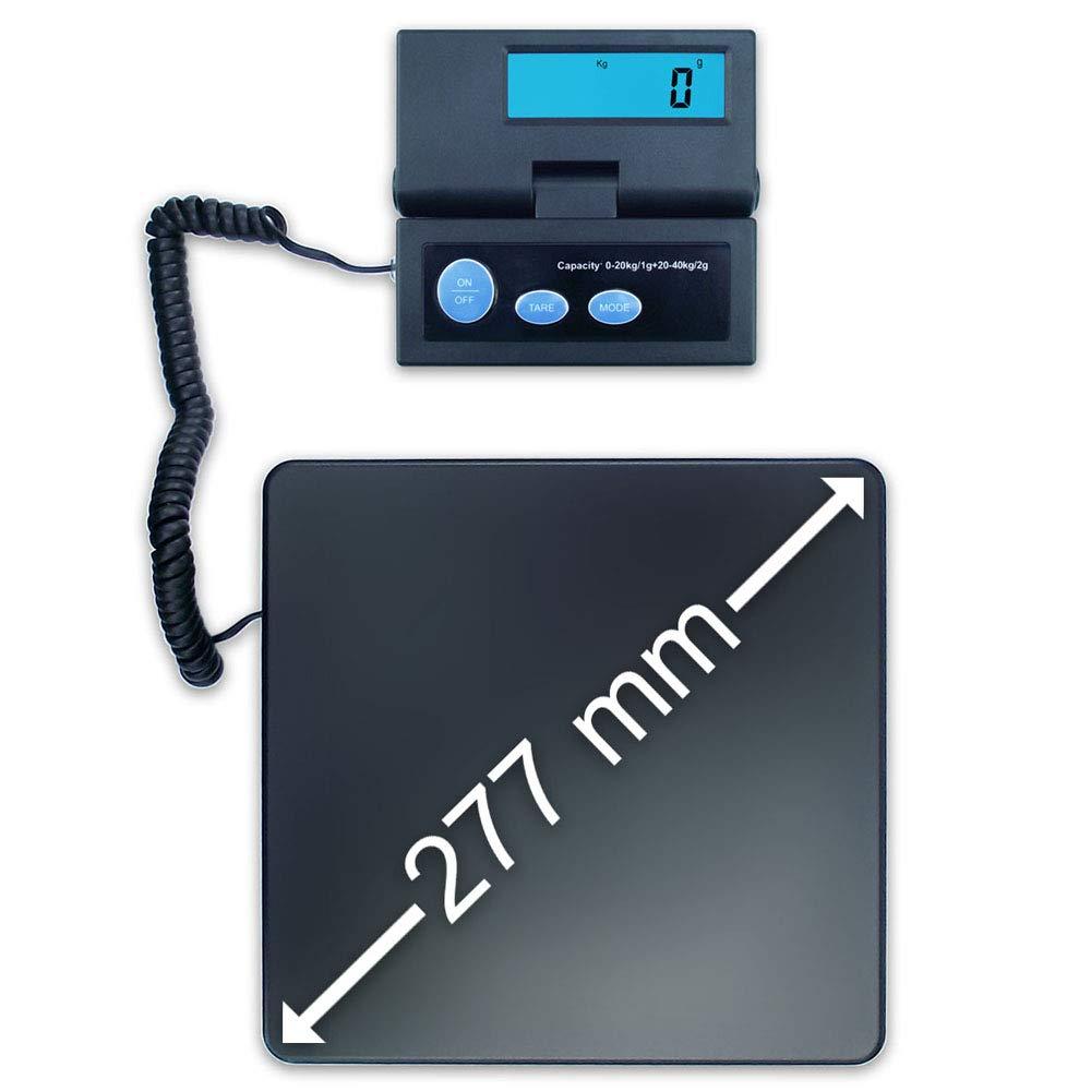 Dipse Bilancia digitale tascabile ACE da 1 g a 40 kg