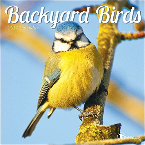 TF Publishing 2017 Backyard Birds Mini Calendar (17-2001)
