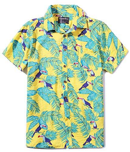 BesserBay Mens Summer Shirt Short Sleeve Hawaiian Shirt Tropical Vacation Shirt XL ()