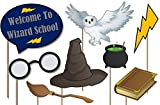 Wizard Castle Photo Booth Props Kit - 20 Pack Party Camera Props