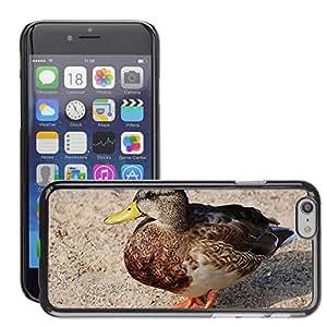 "Super Stella Slim PC Hard Case Cover Skin Armor Shell Protection // M00145680 Duck Ducks Animal Pets Water Bird // Apple iPhone 6 4.7"""