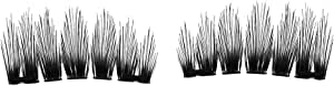 Magnetic False eyelashes-Ultra Thin 3D Fiber Reusable Best Fake Lashes