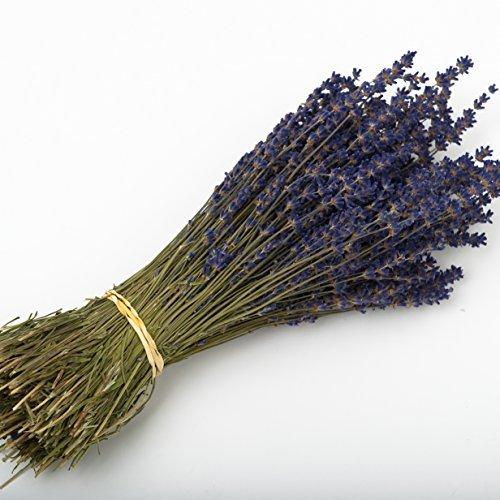 Lavender bunch 250 dried flower stems wedding decoration gift lavender bunch 250 dried flower stems wedding decoration gift junglespirit Gallery