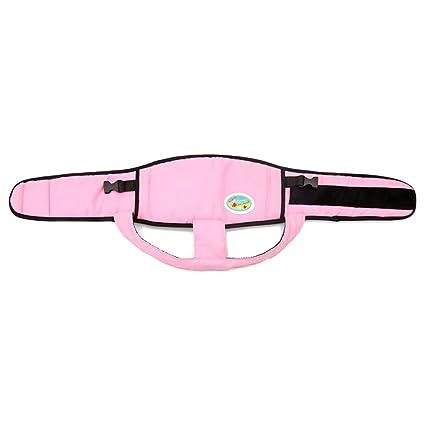 Yeahlvy - Arnés de Seguridad para bebé, 8 Colores, portátil, para ...