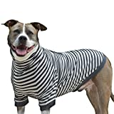 Tooth & Honey big dog stripe shirt pullover full belly coverage (Extra Large)