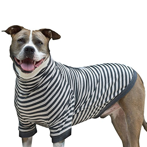 Tooth & Honey Big Dog/Stripe Shirt/Pullover/Full Belly Coverage/for Big Dogs/Pitbull Shirt