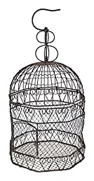 The Lucky Clover Trading Decorative Wire Birdcage Basket
