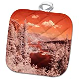 3dRose Danita Delimont - Forests - USA, California, Mammoth Lakes. Infrared overview of Twin Lakes. - 8x8 Potholder (phl_278524_1)