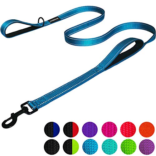 Dog Leash 6ft Long Comfortable