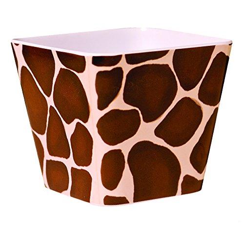Priscilla's Exclusive Giraffe 4