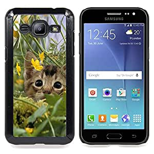 Stuss Case / Funda Carcasa protectora - Gatito lindo gato en campo - Samsung Galaxy J2 / J200