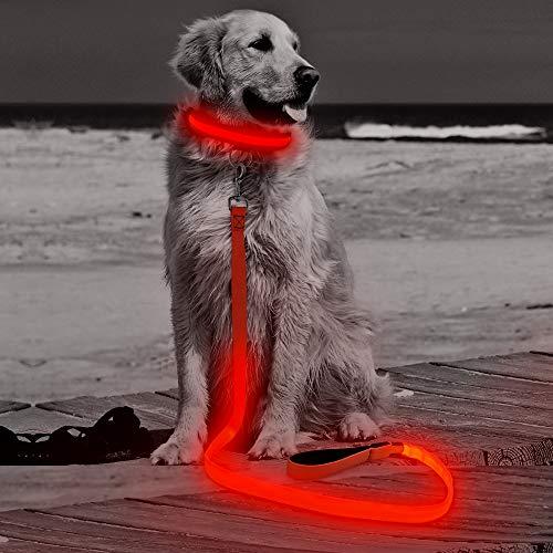 HiGuard LED Dog Leash - USB Rechargeable 4ft/120cm Long Nylon Webbing Pet Safety Leash - 3 Flashing Modes Light Up Perfect for Night Walking (Red)