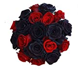 2 Dozen Farm Fresh Black Tinted and Red Roses Bouquet By JustFreshRoses | Long Stem Fresh Black and Red Rose Delivery | Farm Fresh Flowers