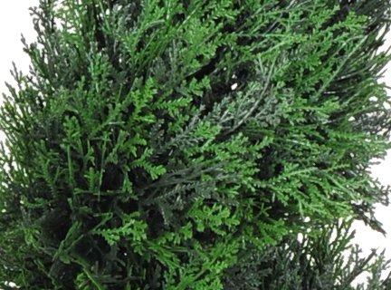 House of Silk Flowers Artificial Cedar Spiral Topiary, 3-Feet