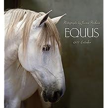Equus 2019 Wall Calendar