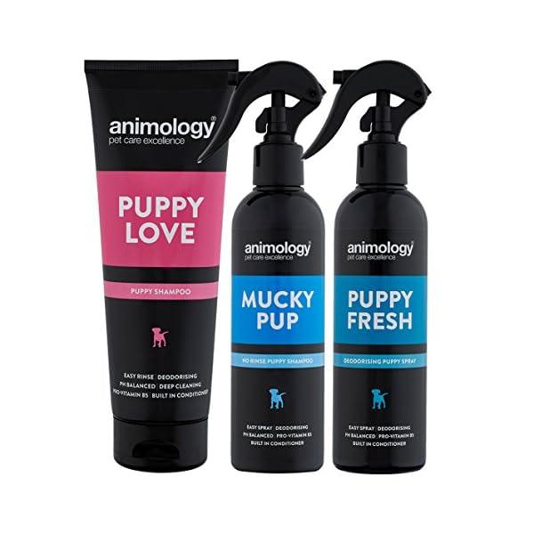 Animology Puppy Pack 1