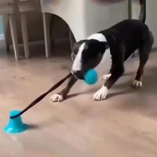 per Juguetes Morder para Perros Multifuncional Bolas con Ventosa y ...