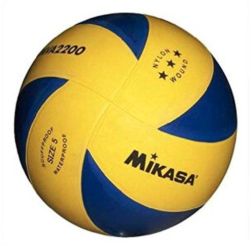 MIKASA GLOBO VOLLEY GOMA 5 8 PANELES: Amazon.es: Deportes y aire libre