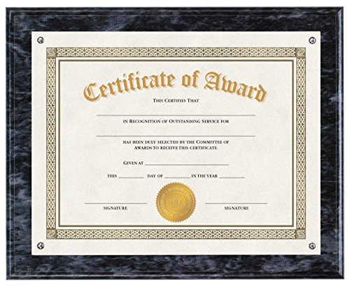 V-LIGHT VL1004 Document Frame, Black Onyx (Black Award Plaque)