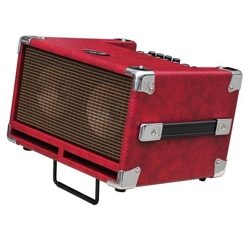 Bass Jones Phil (Phil Jones Bass Cub Bass Combo Amplifier Red)