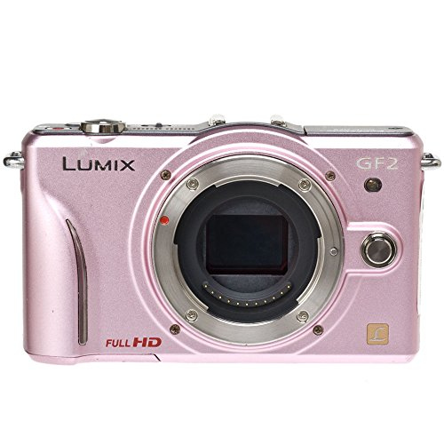 Panasonic Lumix DMC-GF2 Digital Micro Four Thirds Camera Body (International Model No Warranty) (Pink)