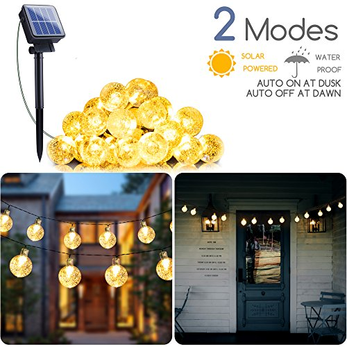 Outdoor Party Lighting Without Electricity in Florida - 9