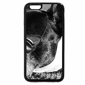 iPhone 6S Case, iPhone 6 Case (Black & White) - I Gotta Wear Shades