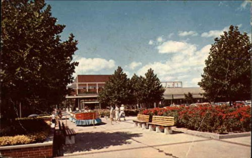 Peacock Terrace - Northland Center Detroit, Michigan Original Vintage - Centre Northlands