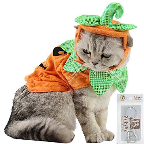 Bolbove Pet Pumpkin Costume for Cats & Small