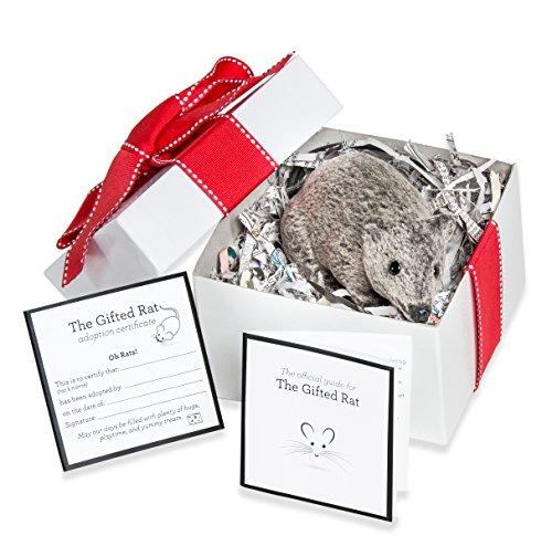 Prank Rat Realistic Decoration Prop Gag Gift - Certificate Gift Fake