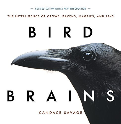 Bird Brains: The Intelligence of Crows, Ravens, Magpies, and -