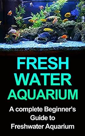 Freshwater aquarium a complete beginners guide to for Beginners guide to fishing